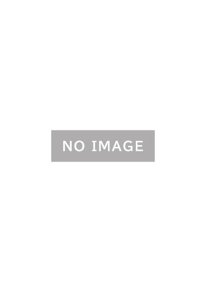 ケミカルアンカー®ELLタイプの資料 イメージ