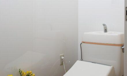 トイレ壁面(FX-899G) イメージ